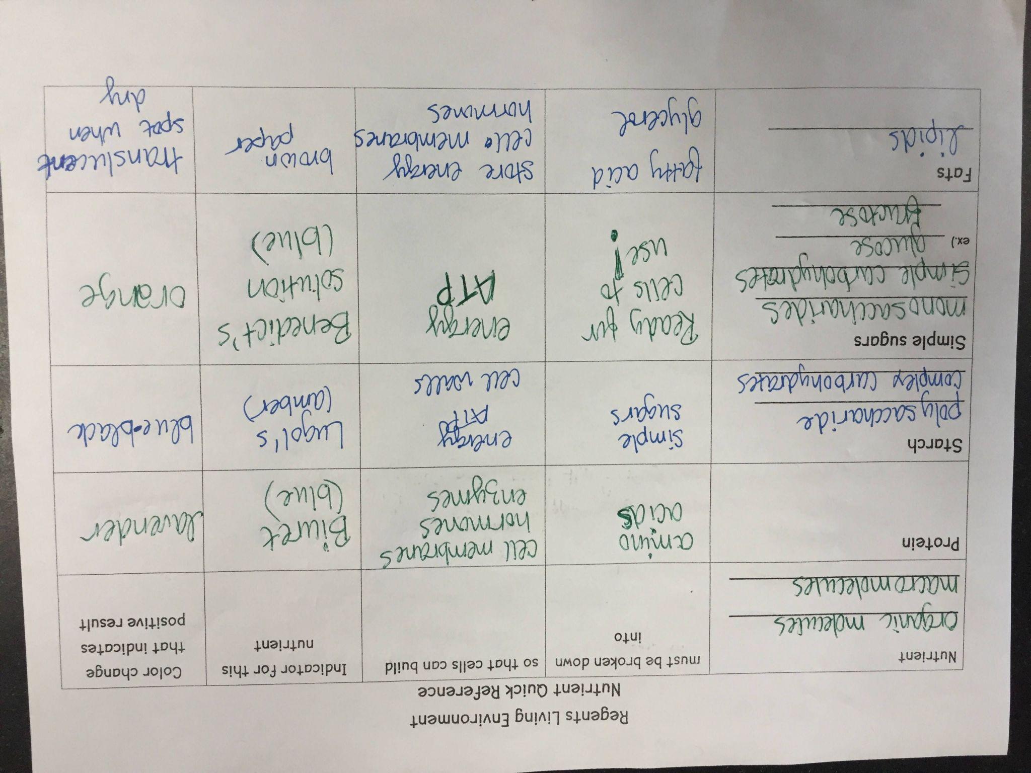 Virtual Lab Dna And Genes Worksheet