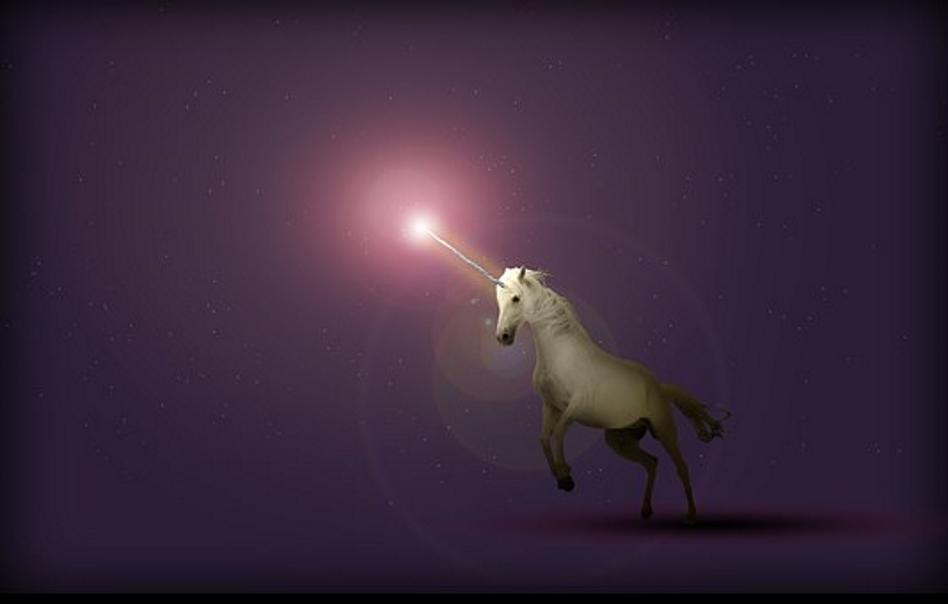 Younited, une nouvelle probable licorne en France