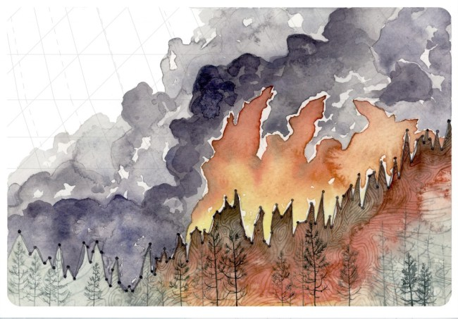Increasing Forest Fire Activity