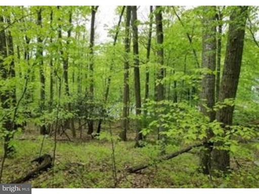 Property for sale at 0 Whitetail Cir, New Ringgold,  PA 17960