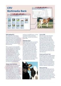 CRV Multimedia DB Brochure