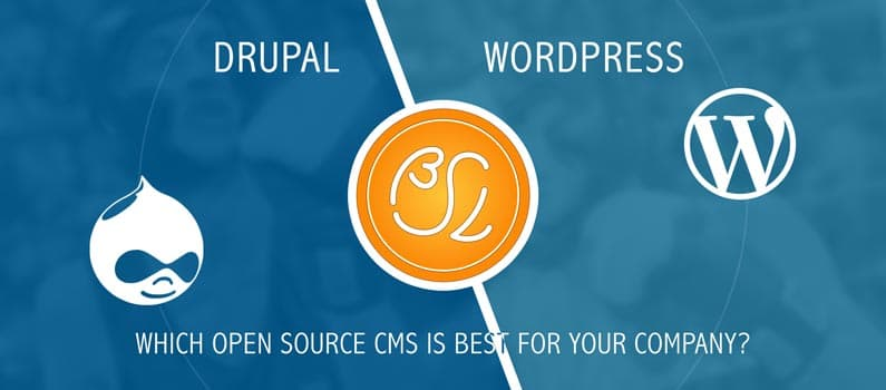 Which open source CMS is best for your company?