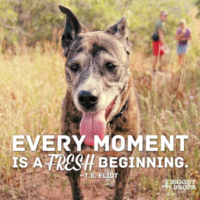 """Every moment is a fresh beginning."" ~T.S. Eliot"