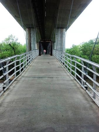 bridge-M
