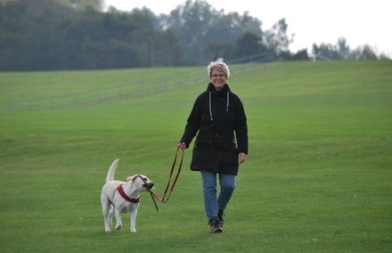 Take long walks with your  dog