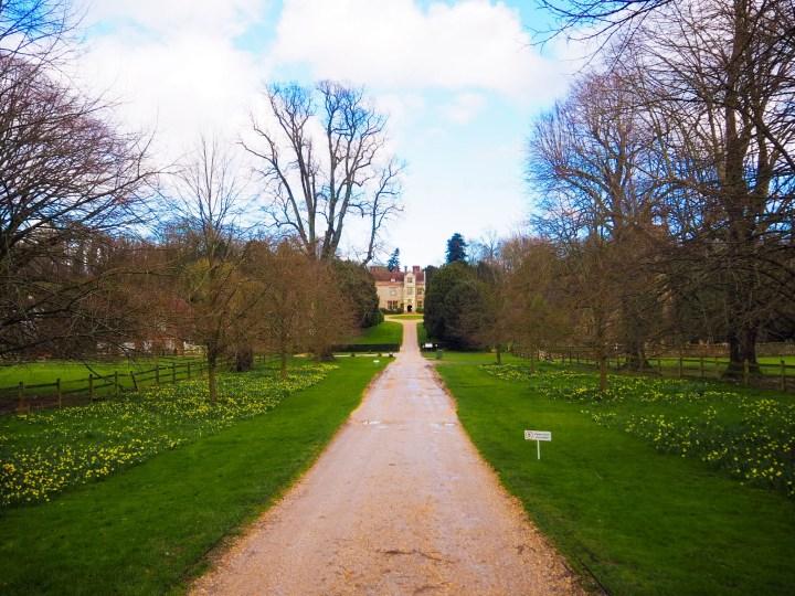 Chawton House's long drive