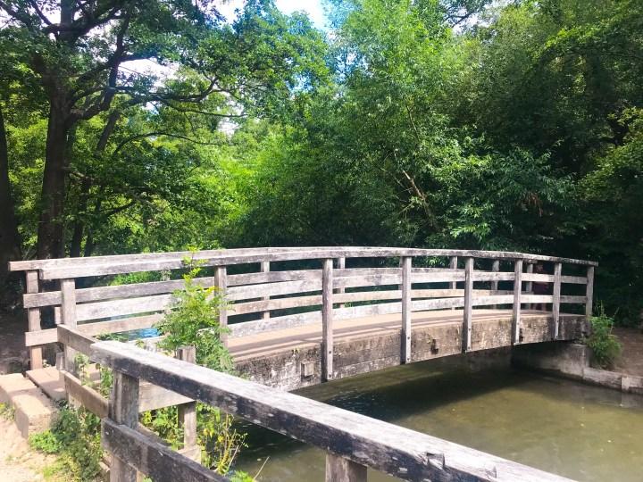 The bridge at Wickham Water Meadows