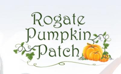 The Rogate Pumpkin Patch, Rogate Village Hampshire