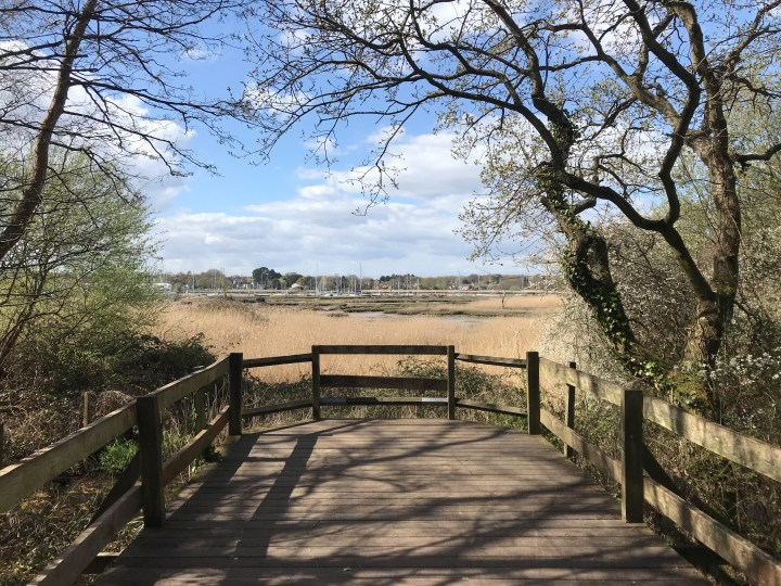 The view point across the river Hamble at Holly Hill Woodland Park in Summer