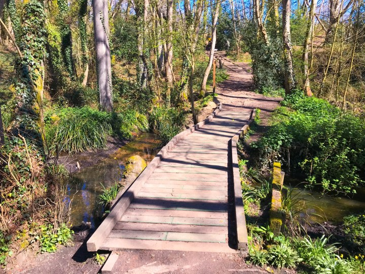 Beautiful walking trails at Warsash Nature Reserve