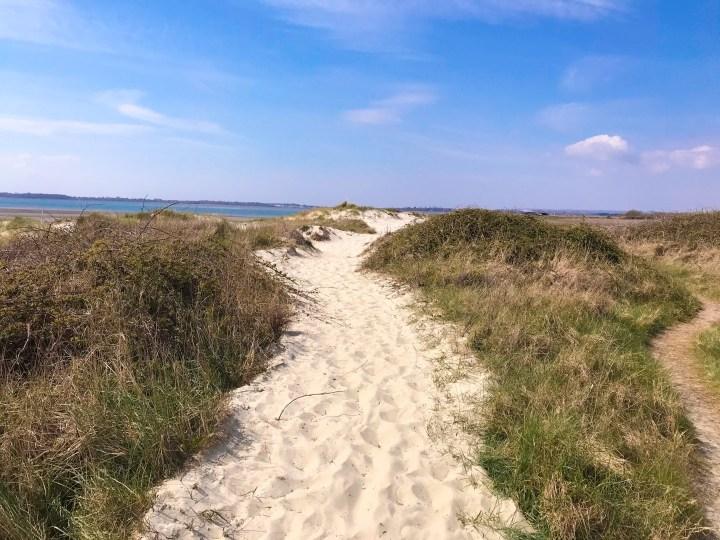 The beach path on the Walk around Thorney Island