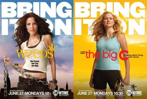 "In 2010, Showtime cross-promoted its new series The Big C with its existing hit show Weeds, recognizing the links between the two unconventional matriarchal dramas, what Claire Perkins calls the ""Bad Mommies"" cycle."