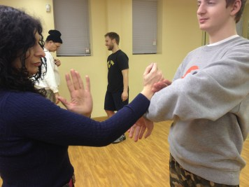 Wing-Chun-Training-2015-1-15_09