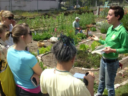Free Farm. Since harvesting began, more than 2,000 lbs of food have been harvested at the Free Farm and distributed for free to neighbors, volunteers and other community projects. In addition to growing organic produce, the Free Farm also offers free workshops, gives away seedlings and gardening supplies and hosts community, school and religious groups.
