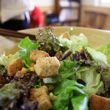 Delicious Saladay!