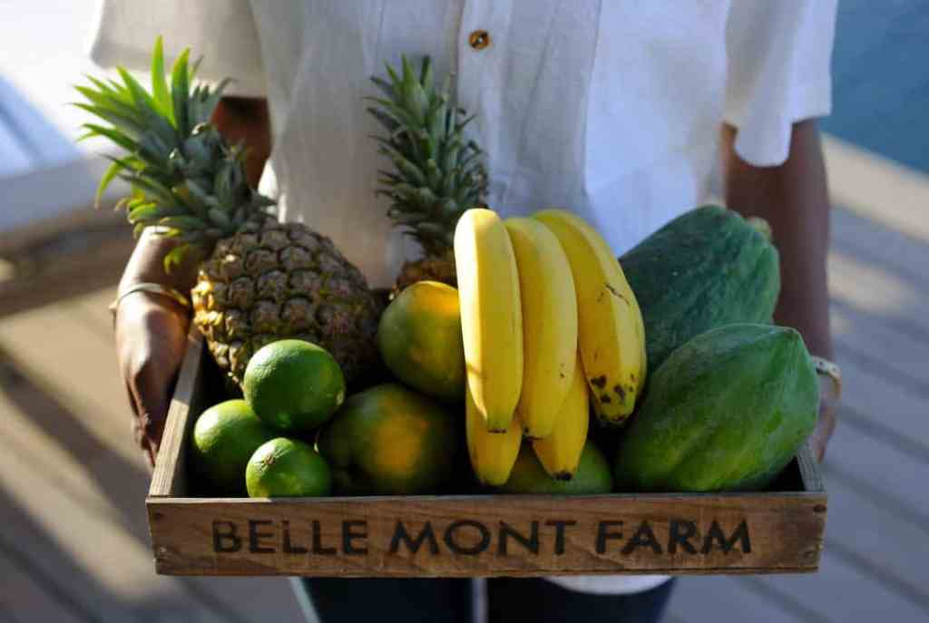 Belle Mont farm is the perfect example of a resort using great travel trends for 2018 to benefit your group!