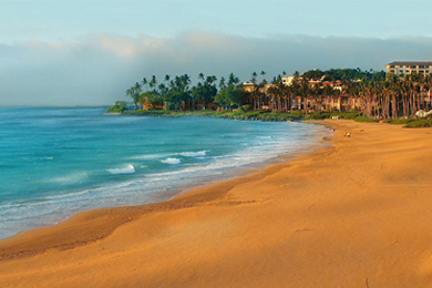 Featured image for Maui 2nd Look