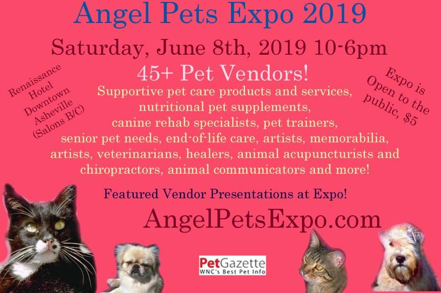 Angel Pets Expo 2019 Half