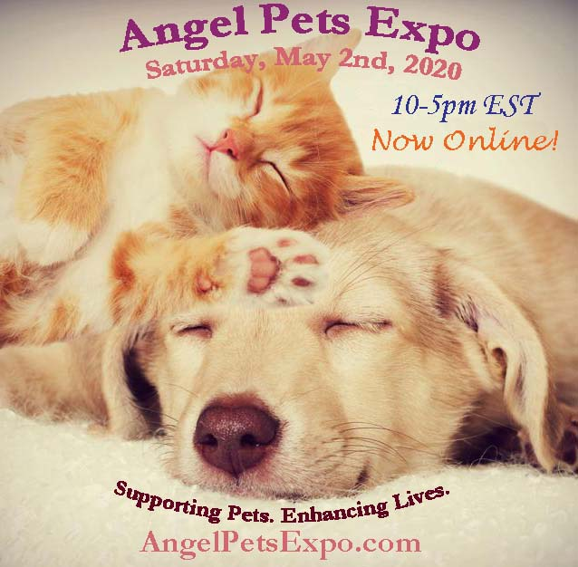 AngelPetsExpo2020 Now Online 10-5pm