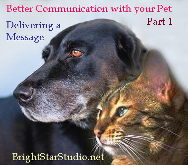 This image has an empty alt attribute; its file name is better-communication-with-your-pet-part-1.jpg