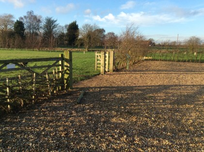 brightwater gardens saxby lincolnshire hedge conservation 4