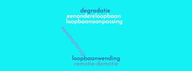 wordcloud demotie