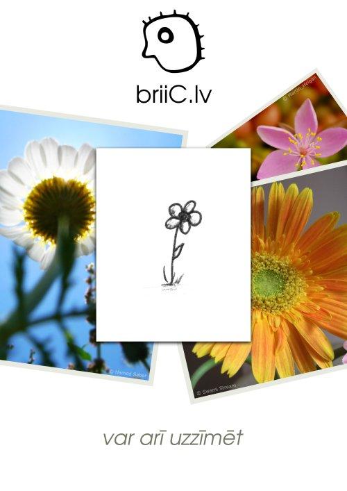 briiC.lv | var arī uzzīmēt | puķe