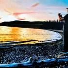 Videographer at Yellowstone Lake Painting