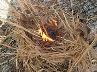 Burning Tinder