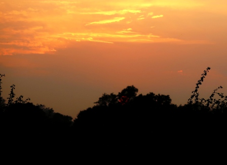 compressed-for-blog-sunset