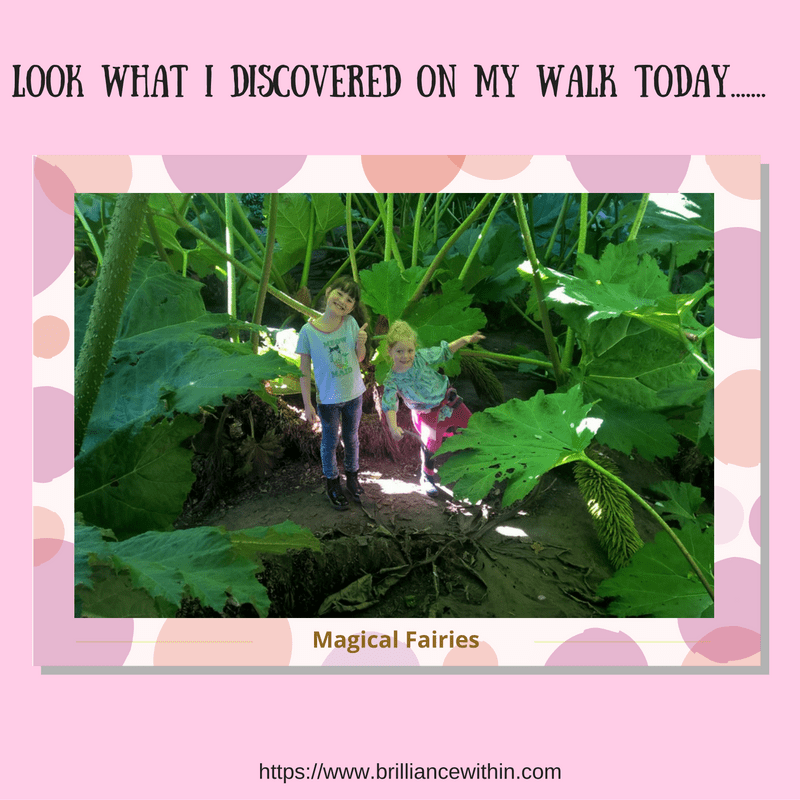 Thursday's Thought For The Day: How to discover magic in your garden..