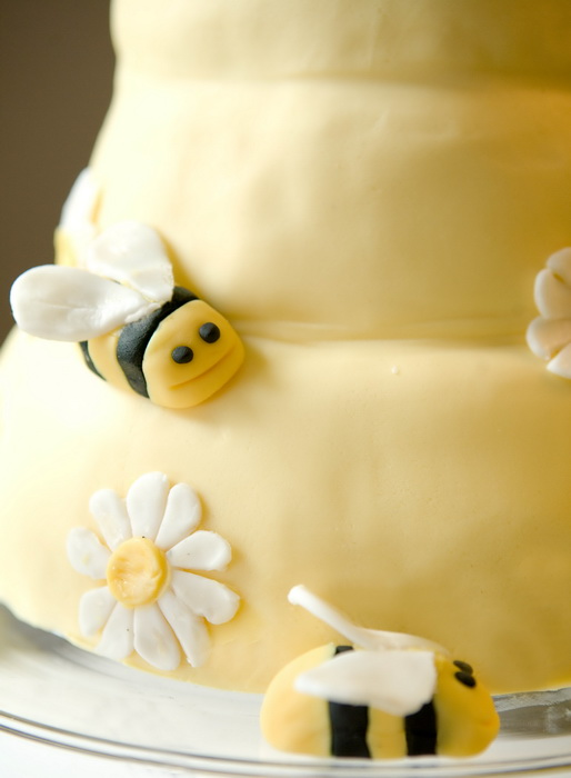 Brilliant Bash: Honey Bee Birthday (3/6)