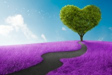 Heart-Tree-bigstock-