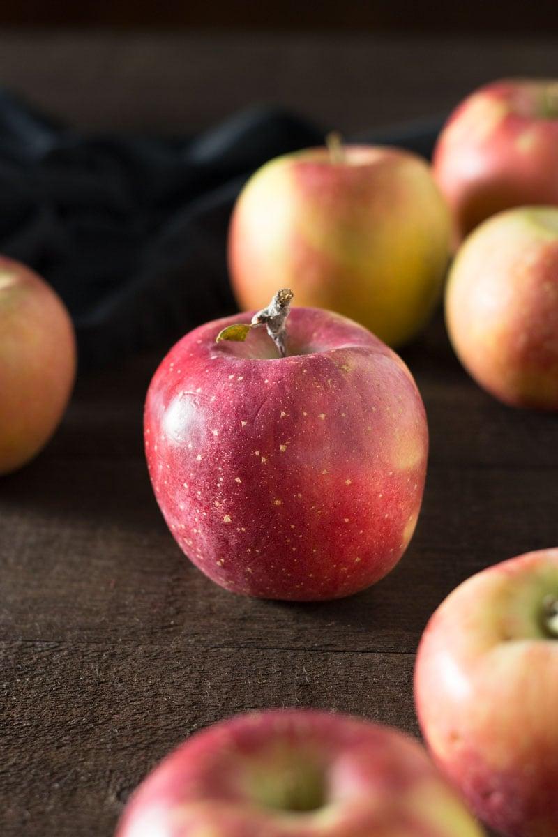 German Apple Almond Cake | Brinasbites.com @Brina's Bites