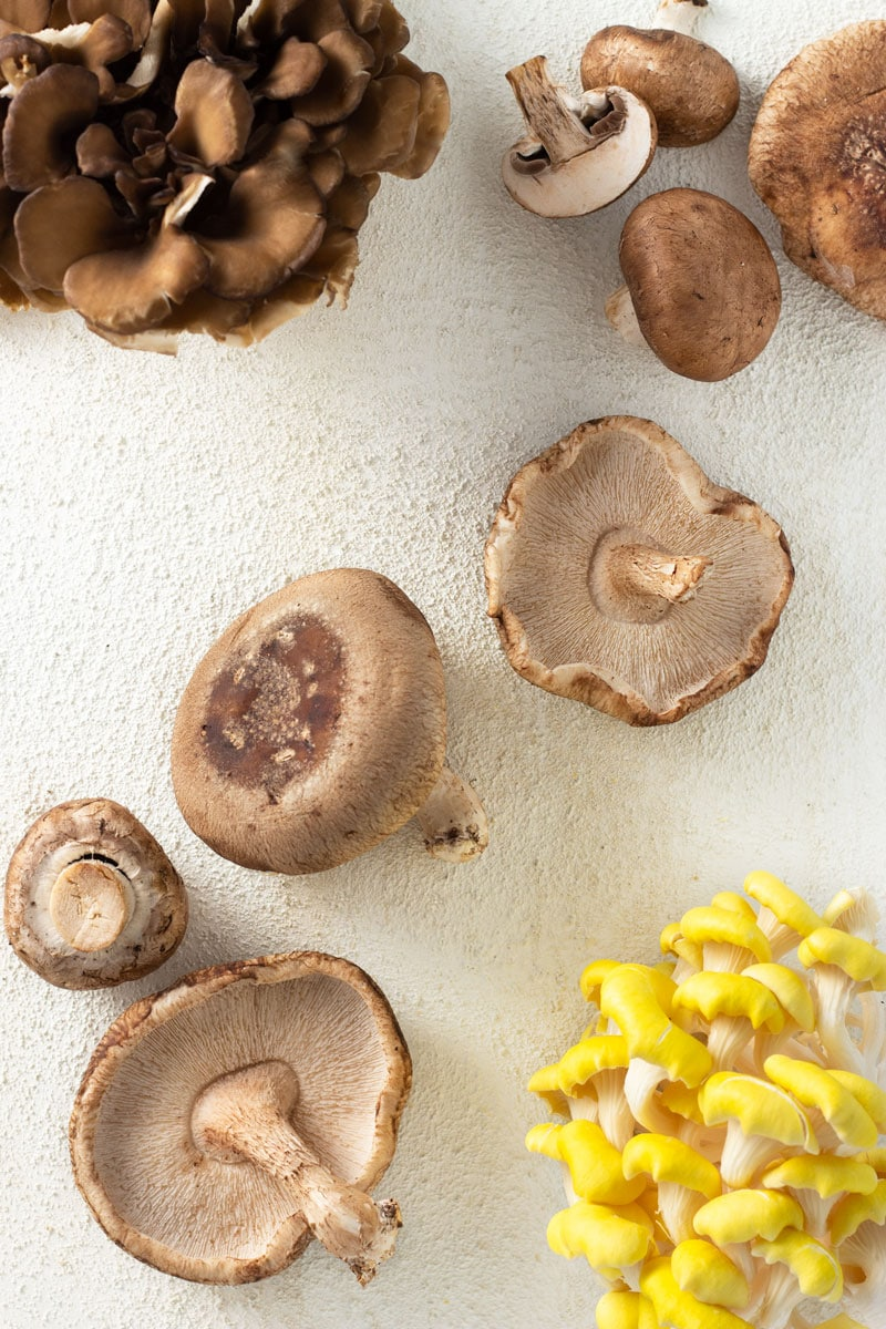 Overhead shot of a variety of mushrooms, maitake, yellow oyster, shiitake and cremini (baby portabella), on an off white textured surface.