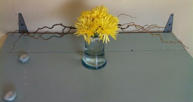 I really love the strong horizontal elements masters of Ikebana use, so I tried to recreate that feeling here.