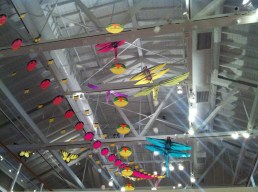 The kites.