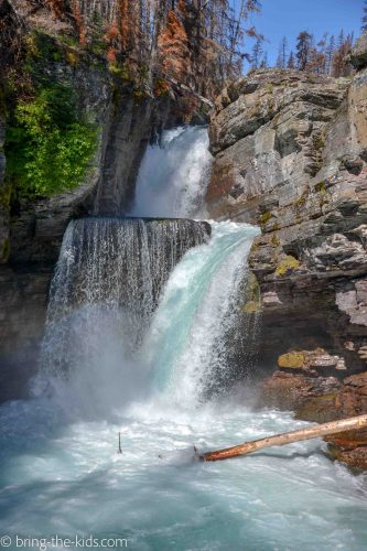 waterfall, glacier national park hikes, st mary falls