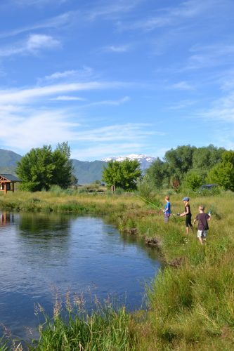 fishing on the provo river midway