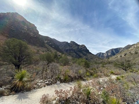 Guadalupe Mountains NP 4