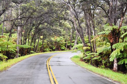 Chain of Craters Road, Hawaii Volcanoes National Park