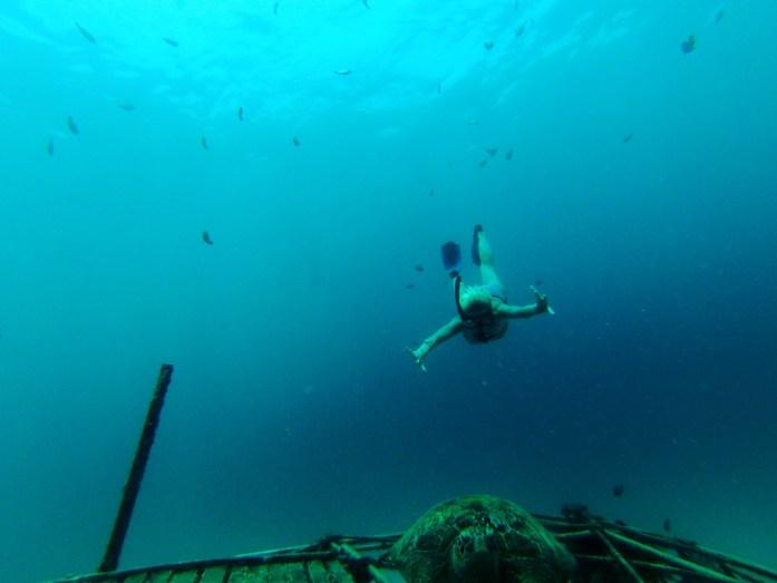 snorkeling-web.jpg