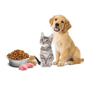 Haustiere-Supermarkt Lebensmittel online bestellen Express Heimlieferung bringos