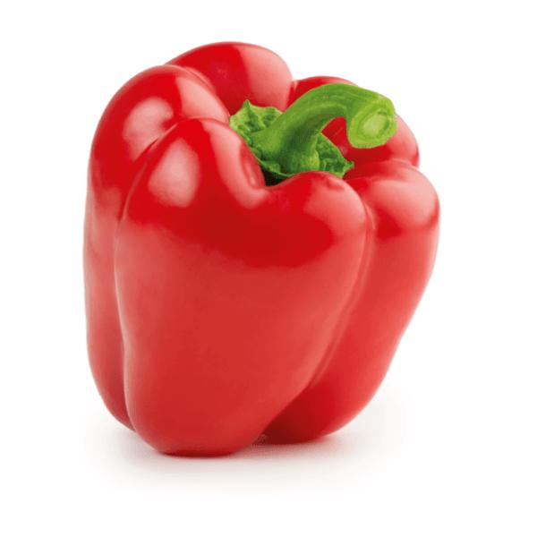 Peperoni Rot 1Stk-min