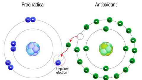 Picture of antioxidant donating electron