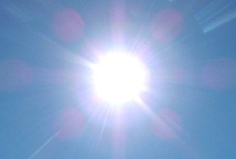Sunshine Summer Lawn Care