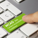 WCAG Web Content Accessibility Guidelines - Inscription on Green