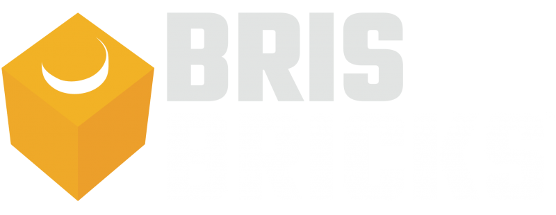 BrisBricks Inc.