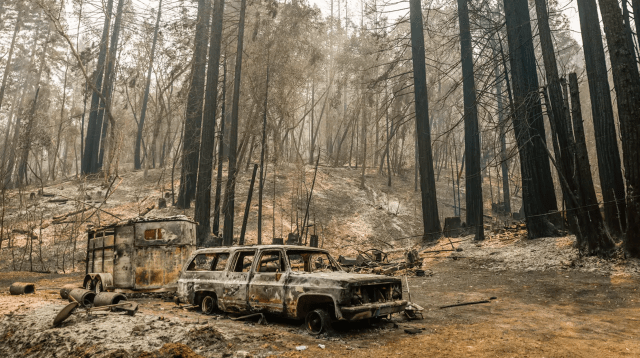 The LNU Lightning Complex fire tore through a property on Mill Creek Road near Healdsburg in Sonoma. Some woods in the area had not experienced a fire in a century. (Gabrielle Lurie/The San Francisco Chronicle via Getty Images)