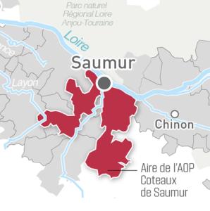 Coteaux de Saumur; LoireValleyWine.com